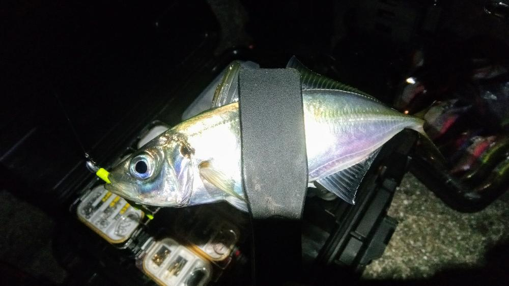34 STREAM HEAD(ストリームヘッド) 0.8g+Gulp! SW Baby Sardine 2inch CH(チャートリュース