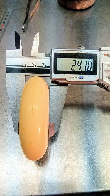 幅約25mm