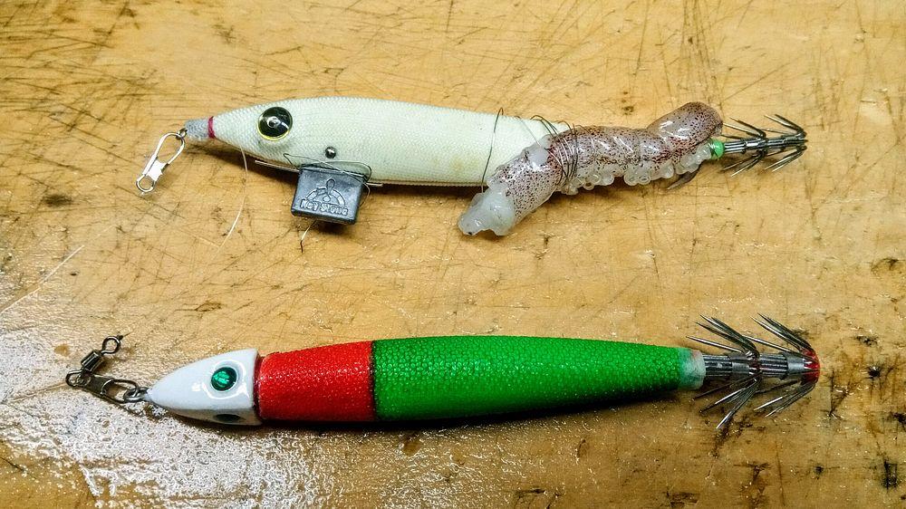 邪道エギ(早福型)には釣れたイカのゲソを!これは船長に教えてもらいました。写真のは緩んでズレちゃってますが。